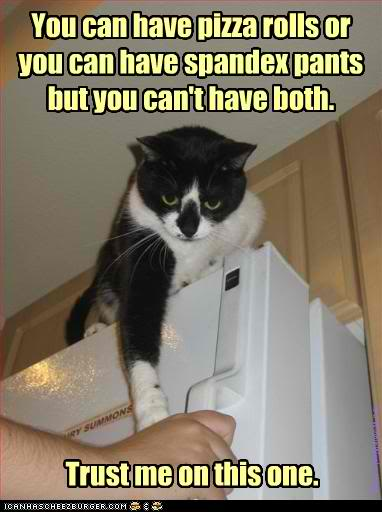 funny-pictures-cat-gives-you-advice
